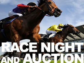 Photo 1 - Race Night and Auction June 2013